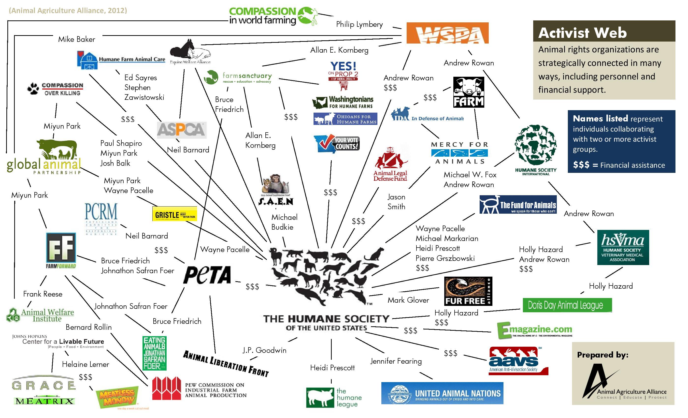 animal activist groups - HD1351×815